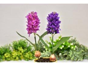 Umělý hyacint | s cibulkou | na stonku
