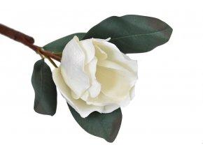 umela kvetina magnolie bila