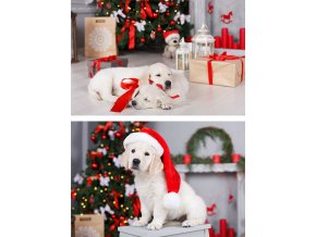 Taška dárková papírová XLL, vánoční motivy, mix dvou dekorů