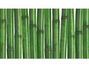 Obraz plátno 500 x 100 cm