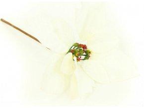 Vánoční růže, poinsécie , umělá květina vazbová, bílá