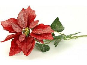 Vánoční růže, poinsécie , umělá květina , červená zasněžená