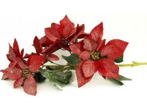 Vánoční růže, poinsécie 5 květů , umělá květina , červená zasněžená