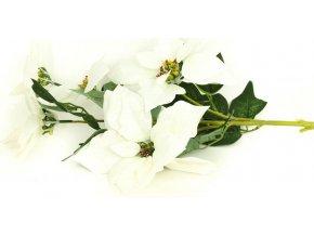 Vánoční růže, poinsécie 5 květů , umělá květina , bílá