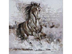 Obraz - kůň, ruční olejomalba s kovovými exekty