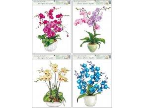 Okenní fólie orchidej 42x30cm set 4 ks
