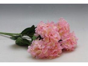 kytice hortenzii