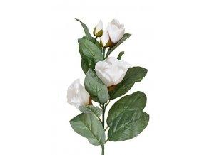magnolie vetvicka 103 cm