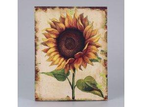 Obraz na plátně slunečnice | 3 motivy