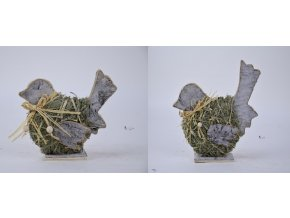 ptáček s mašlí hlavní foto