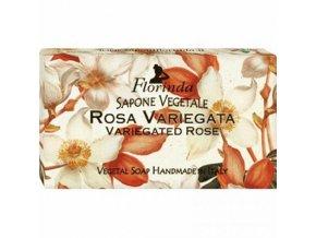 Mýdlo Rosa Variegata