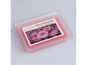 Vonný vosk do aroma lampy Třešňový květ 73g
