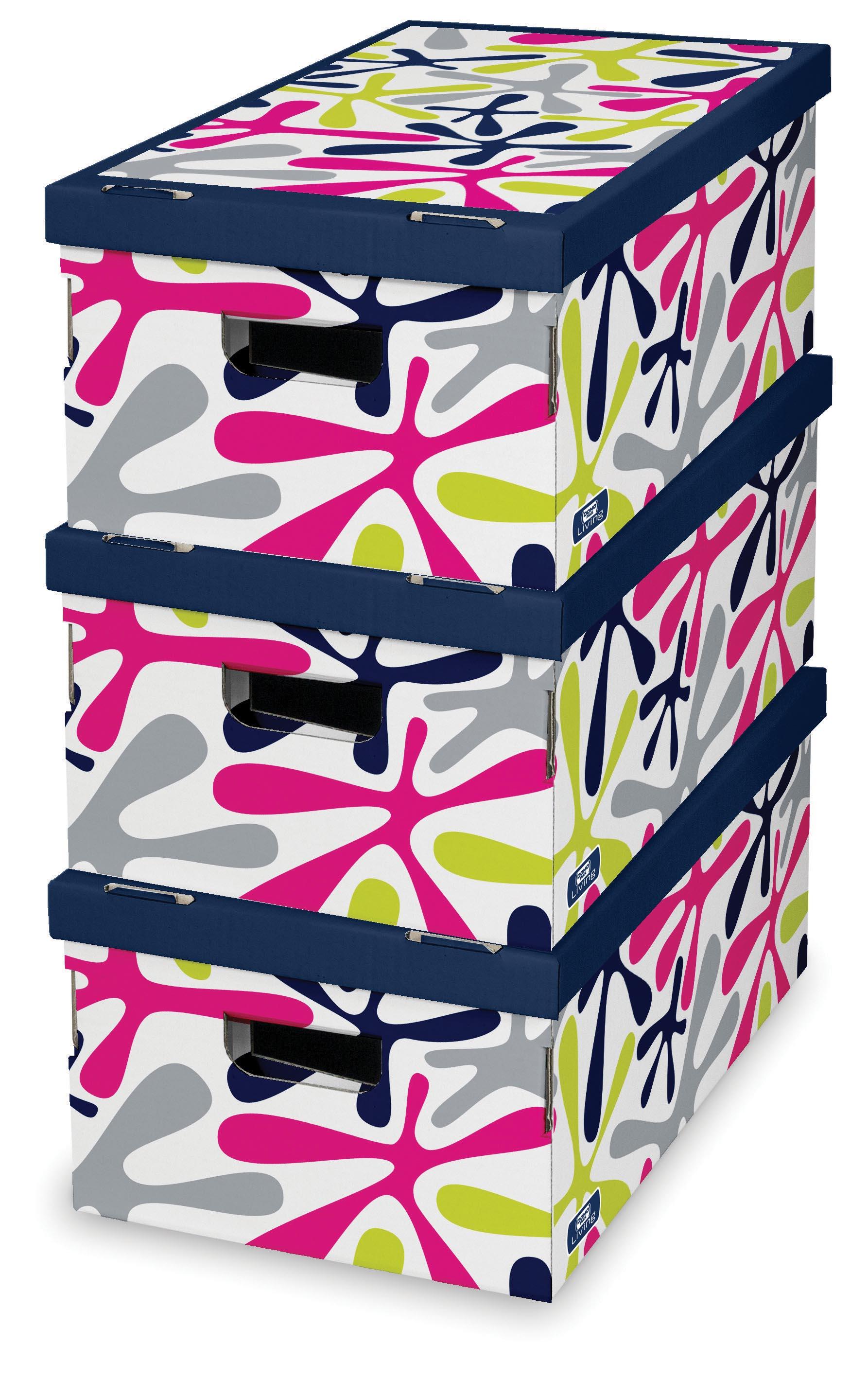 DOMOPAK Living Úložný box barevný set 3ks