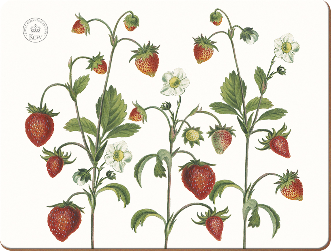 Creative Tops Korkové prostírání Strawberry Fayre