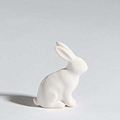 Zajíc Blanc bílý Velikost: malý