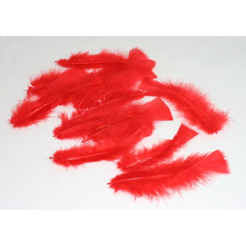 Ambiente Peříčka dekorační balení 12ks Barva: červená