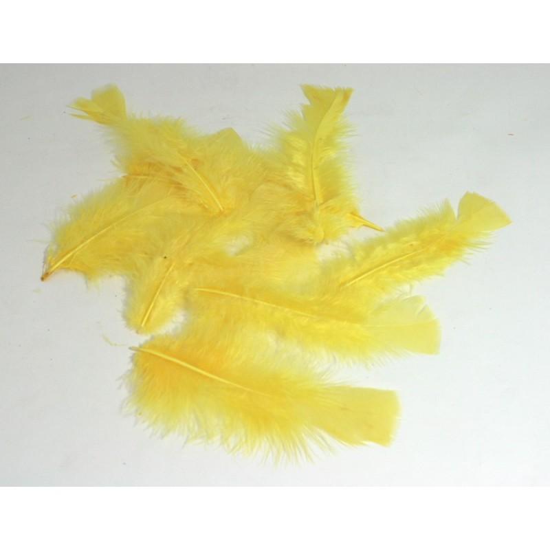Ambiente Peříčka dekorační balení 12ks Barva: žlutá
