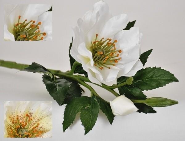 Harasim Květina umělá Čemeřice - Helleborus