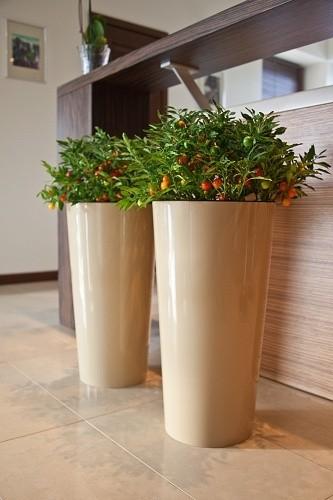 Plastový květináč Lilia 570mm Barva: bežová