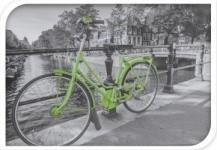 Harasim Úložný plastový box kolo 20x30x40cm Barva: zelená