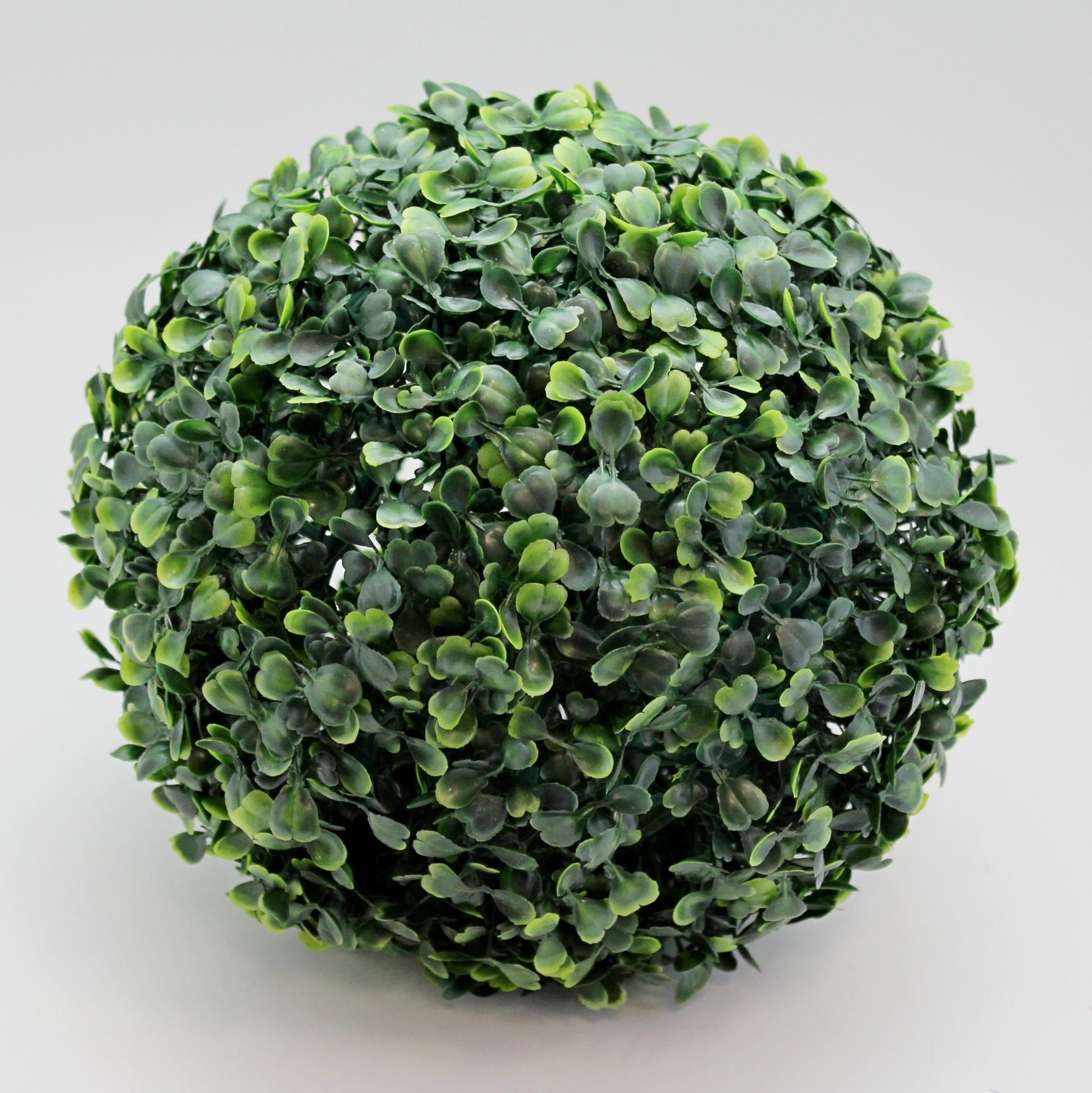 Buxus tmavě zelená koule Průměr: 22cm
