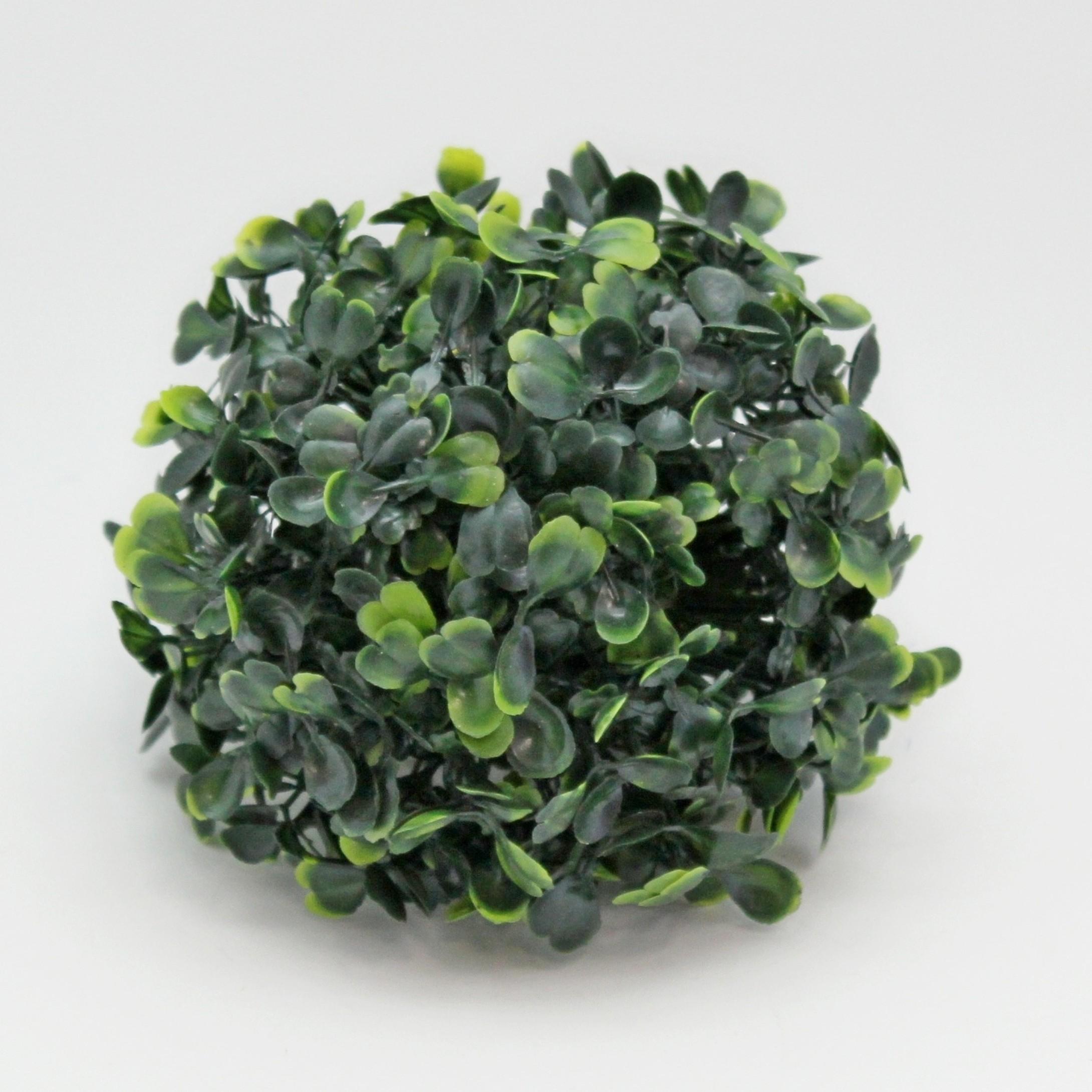 Buxus tmavě zelená koule Průměr: 10cm