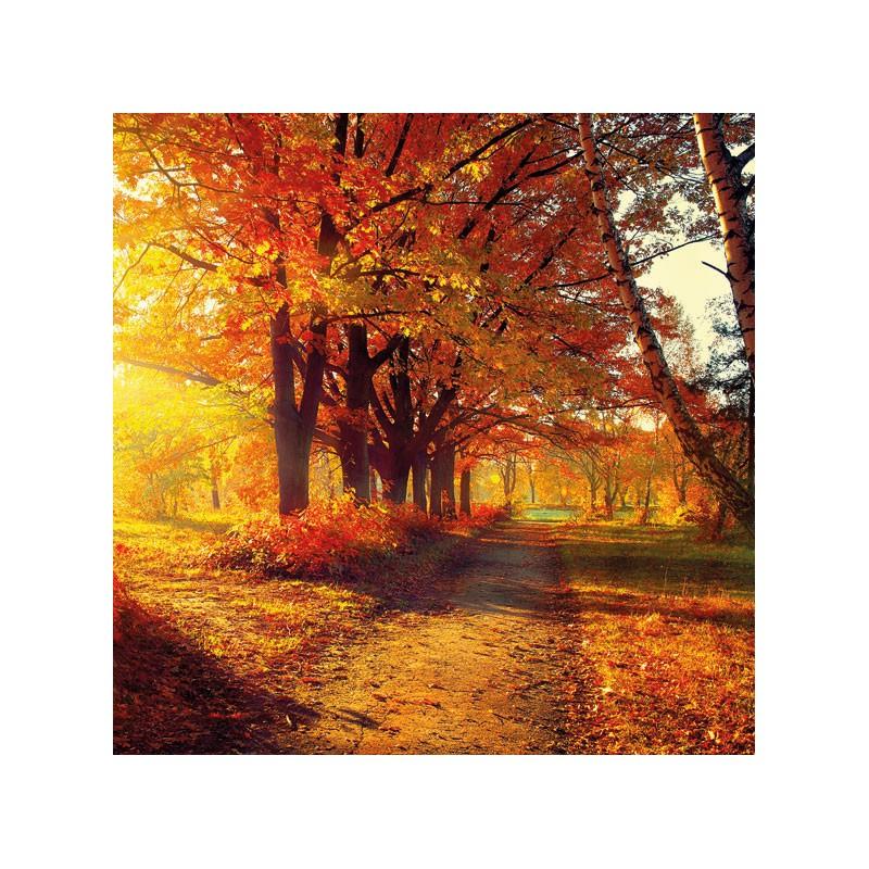 Ambiente Papírové ubrousky podzimní park balení 20ks
