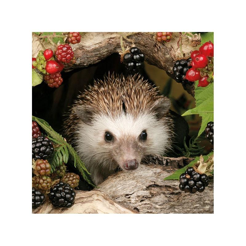 Ambiente Papírové ubrousky ježek s lesním ovocem balení 20ks