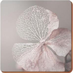 Creative Tops Korkové prostírání Skeleton Flower Rozměry: 12x12cm - 4ks