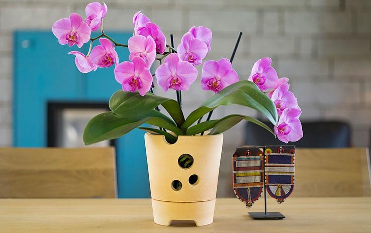 DENK Keramik Květináč na orchidej 16cm