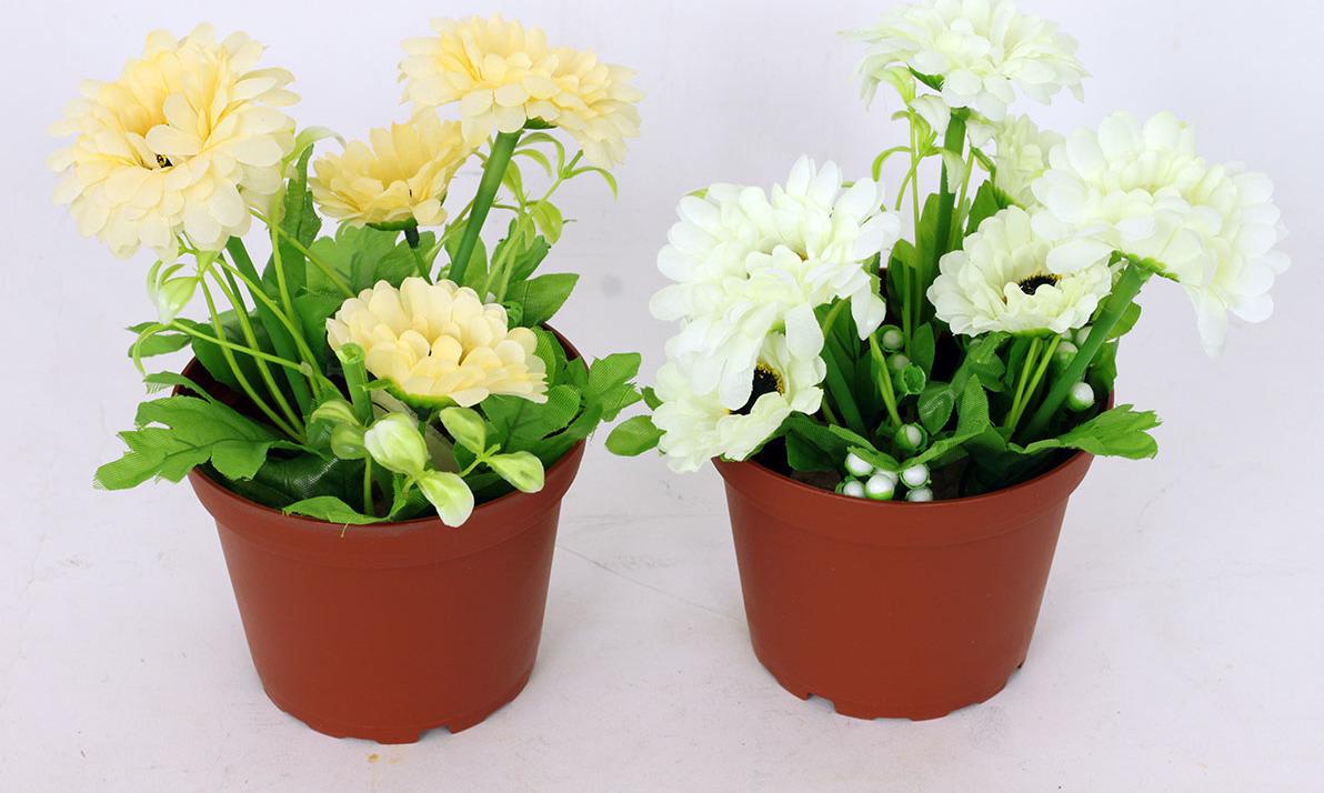 Umělé kopretiny v květináči Barva: bílá