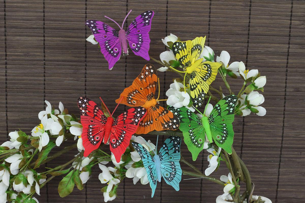 Artium Motýl s klipem sada 12 ks