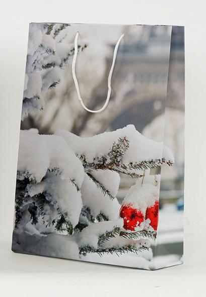 Dárková vánoční taška 25x9x34cm Provedení: C