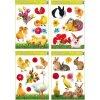 Velikonoční okenní fólie | živá zvířátka | 42x30cm