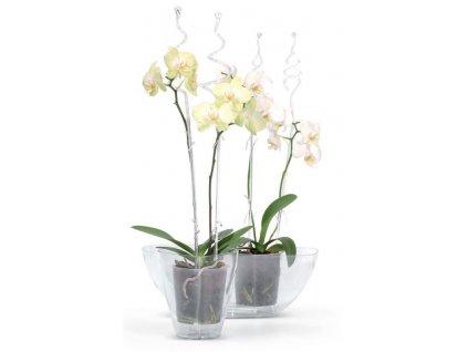 Opěra na orchideje COUBI ISTC01, transparentní