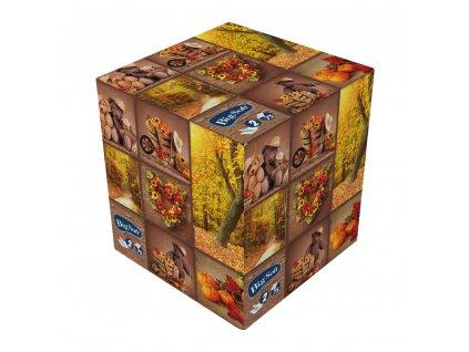 Big Soft Podzim Papírové kapesníčky v krabici, 2vrstvé, 75 ks