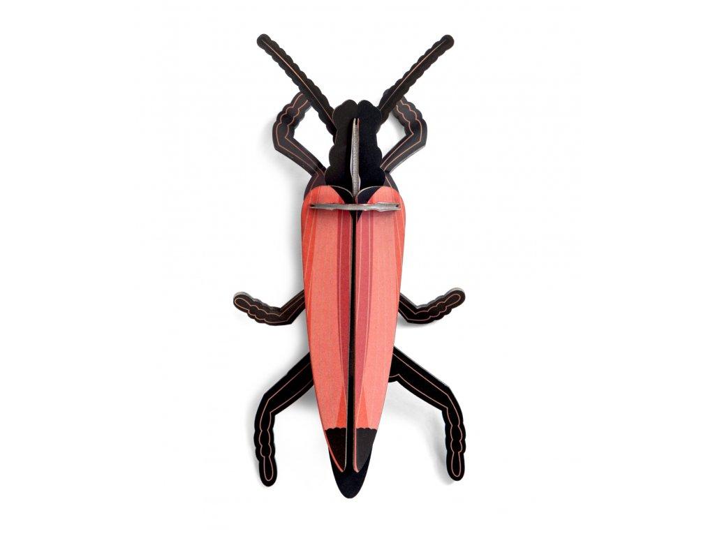longhorn beetle 2