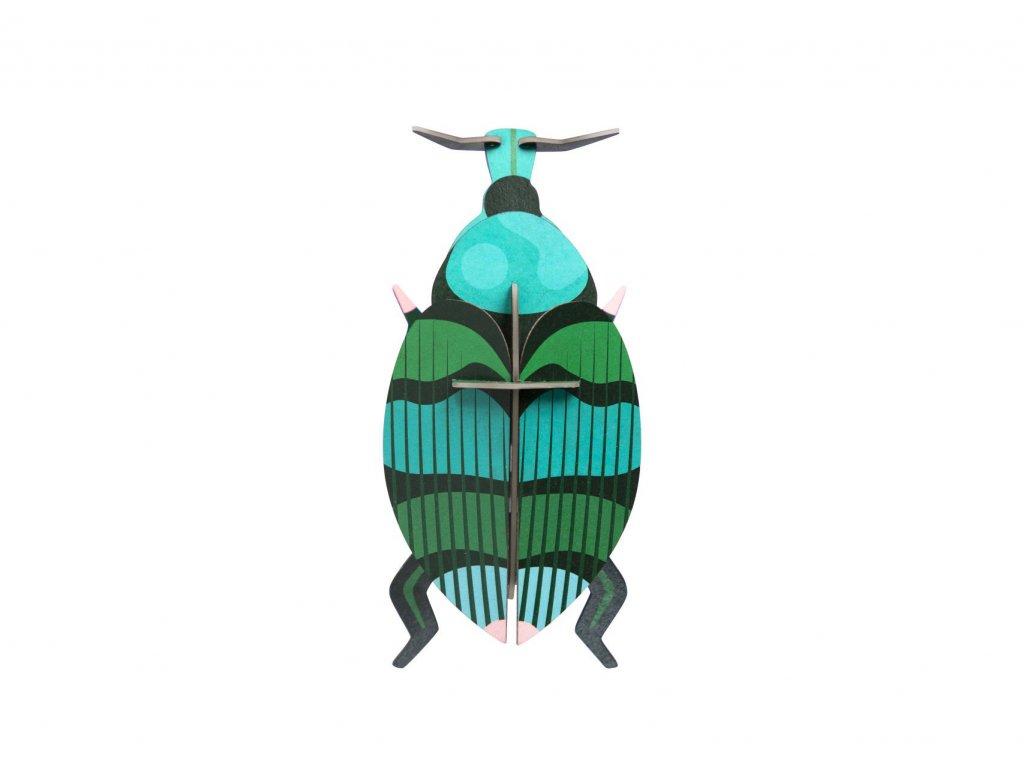 weevil beetle 5