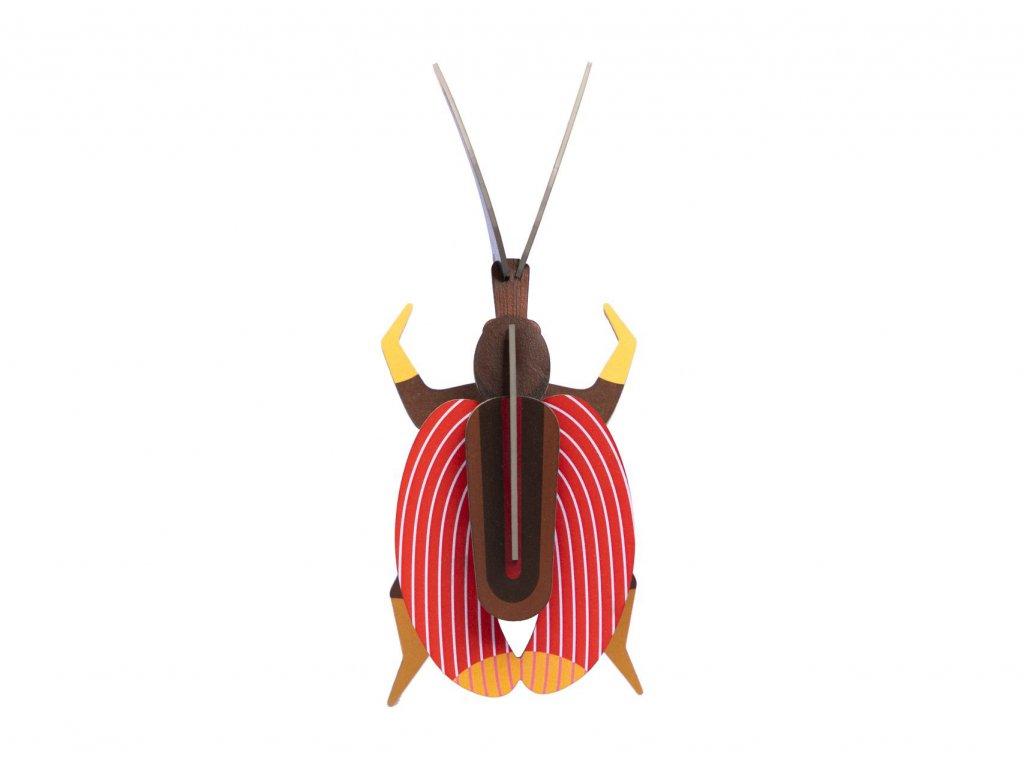 violin beetle 6