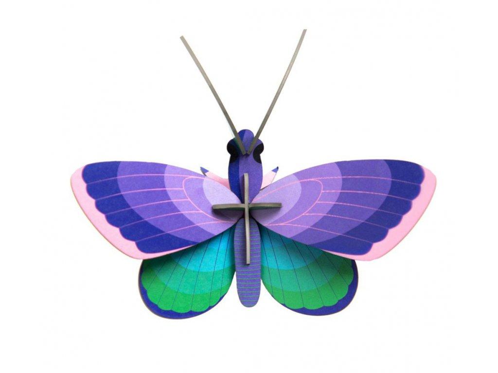 blue copper butterfly title