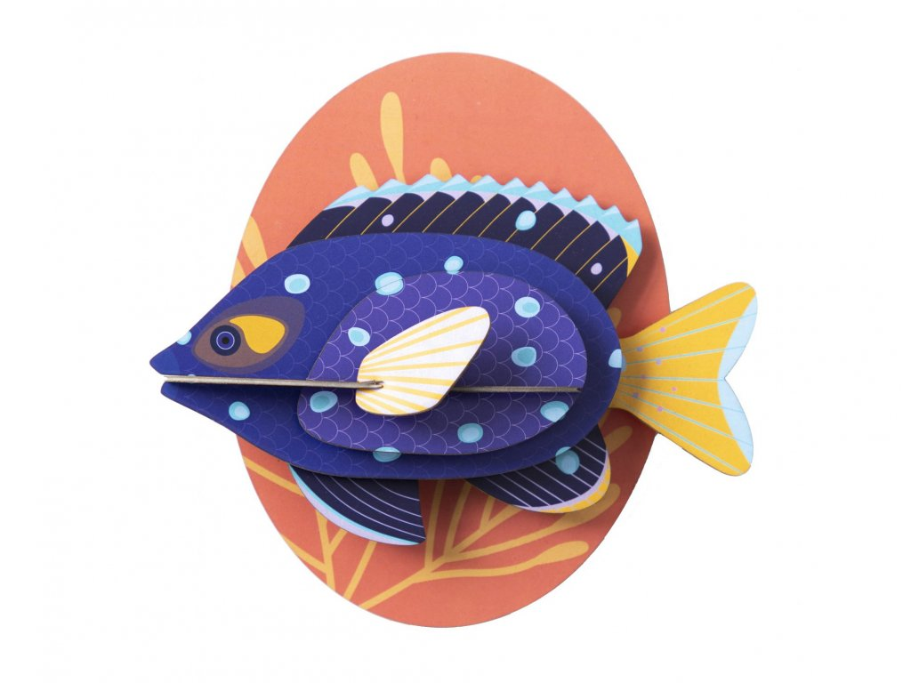 jewel damselfish 3