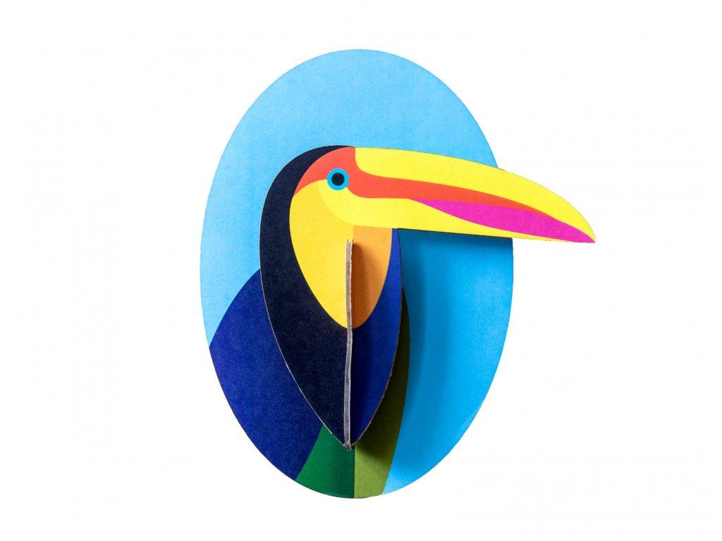 little friends toucan