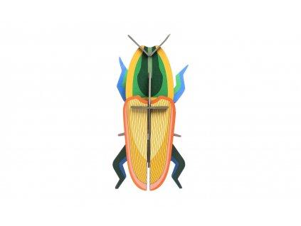 madagascar beetle 3