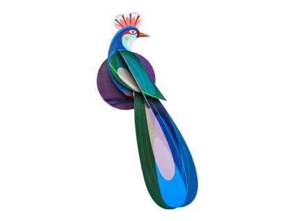 paradise bird, banda