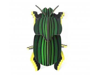 scarab beetle 2