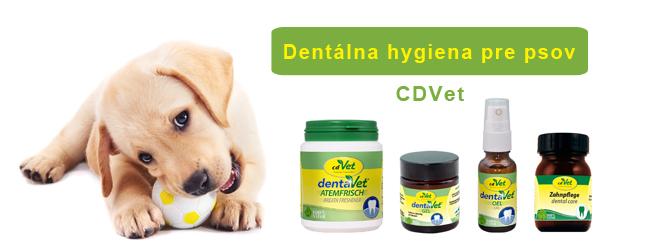 Zdravé zuby sú pre psa dôležité