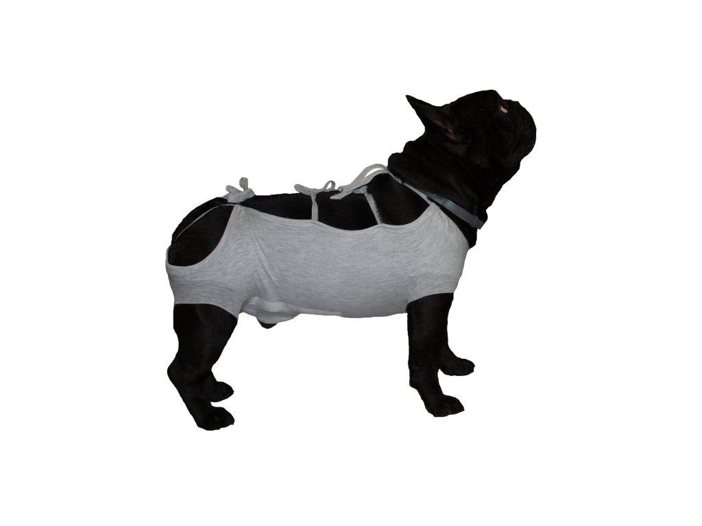 Pooperační krytí břicha na zavazování - pes