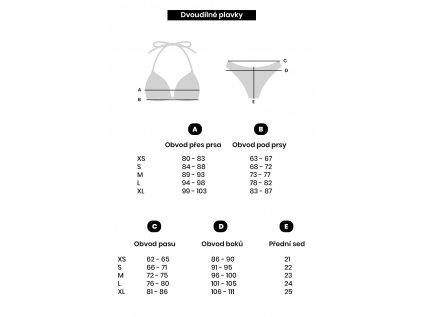 Dámské dvoudílné plavky Kaylie černé