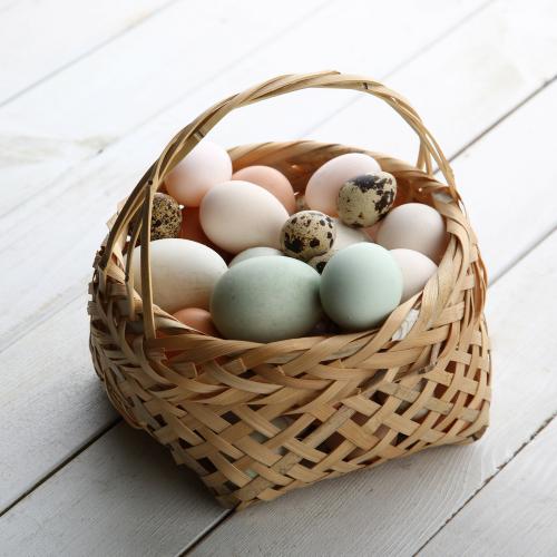Nakládaná vařená vajíčka