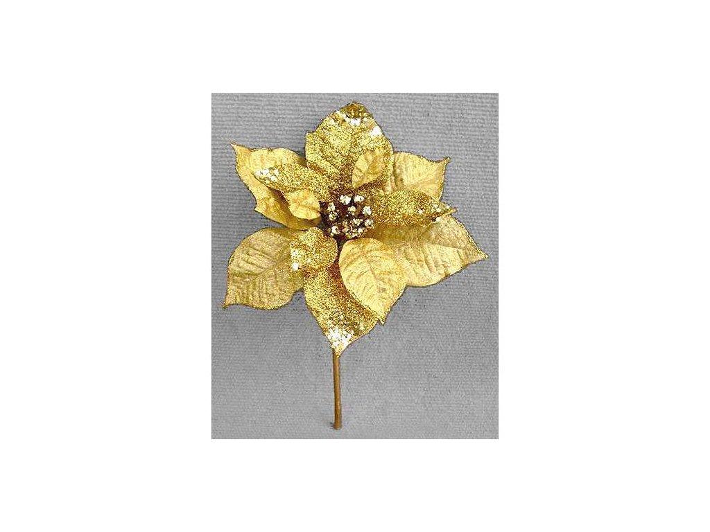Kvet Poinsettia GlitterGold, zlatá, stonka, 23x20 cm, bal. 6 ks